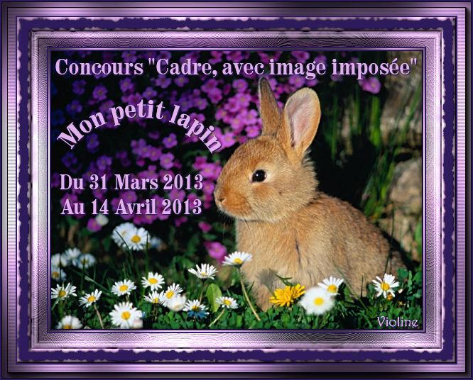 Chez Violine - Forum de Loisirs et Créations Graphiques - Page 3 240810BanLapin310313