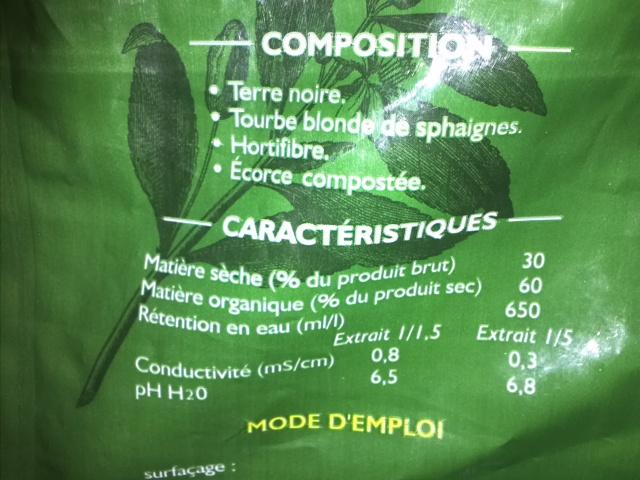 """Nouveau projet : Bac de 64 litres, """"naturel"""" méthode Walstad - Page 3 242777IMG1575"""