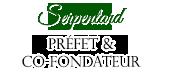 6ème année à Serpentard & Préfet