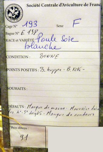 2014 - salon de l'Aviculture de Paris du 22/02/2014 au 02/03/214 - Page 4 249411P1130623