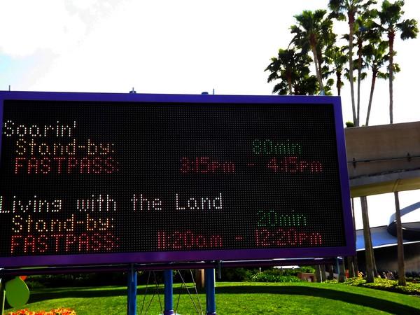 WDW Mai 2011 et la fete continue en Mars 2012 - Page 40 249886wdw2012856