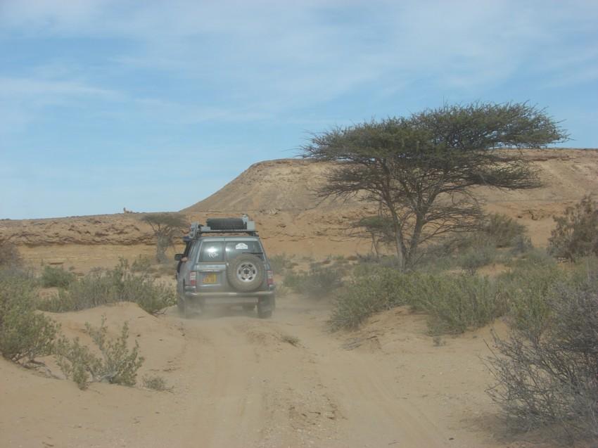 Le Grand Sud du Maroc - II 251570047
