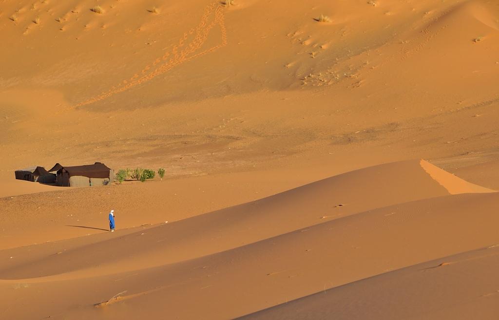 Mes ballades dans le désert de l'Erg Chebbi. 252432DSC8447
