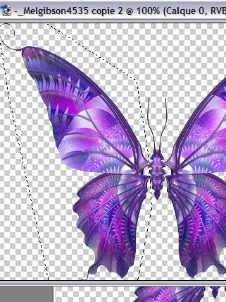 Tutoriel debutant faire bougé les ailes d'un papillon 258185Capture04