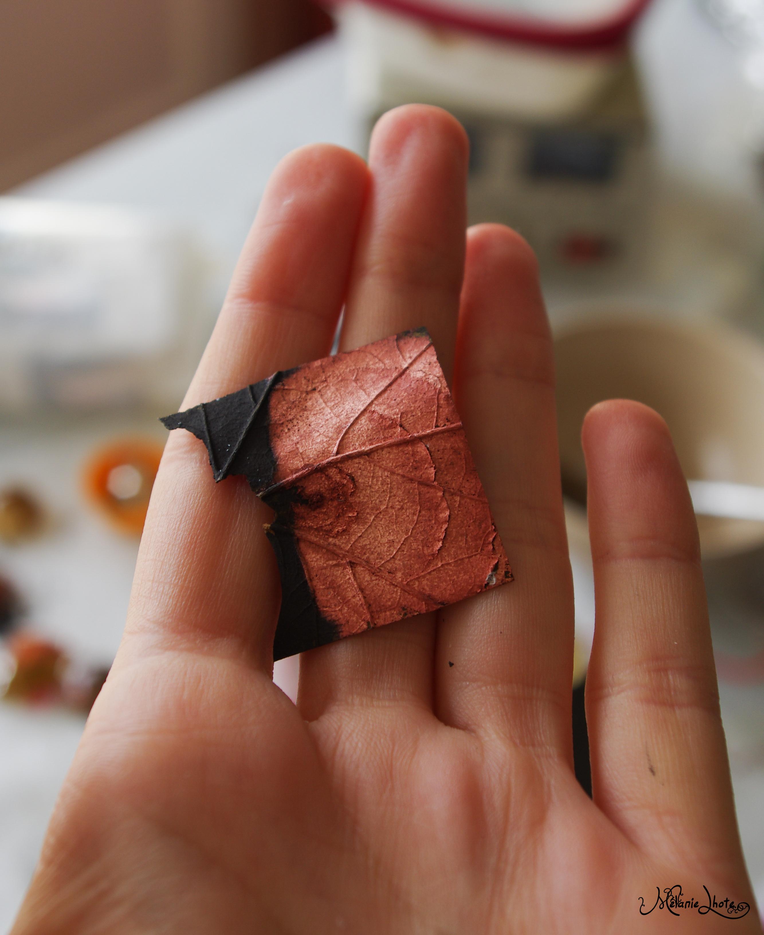Electrolyse - bain de metal création bijoux avec vegetaux  261002IMGP81458