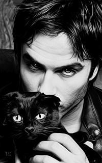 Tag gallery - Page 2 261485iansommerhalder2