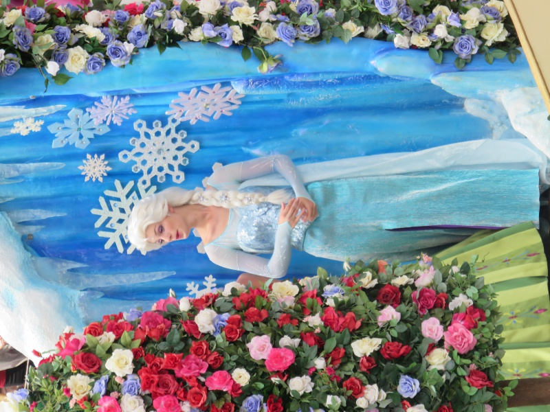 Walt Disney World + Universal Studios + Sea World + Busch Gardens Summer 2014 - Page 4 267290IMG0946