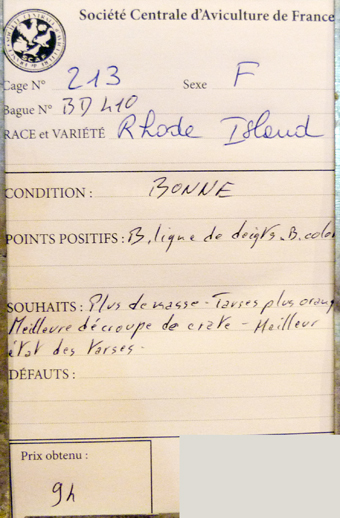 2014 - salon de l'Aviculture de Paris du 22/02/2014 au 02/03/214 - Page 4 268851P1130530