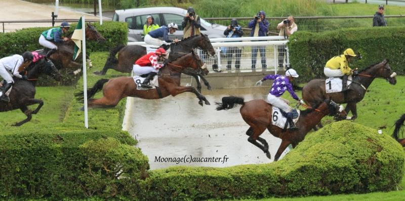 Photos Auteuil 22-05-2016 2690315J6A2833