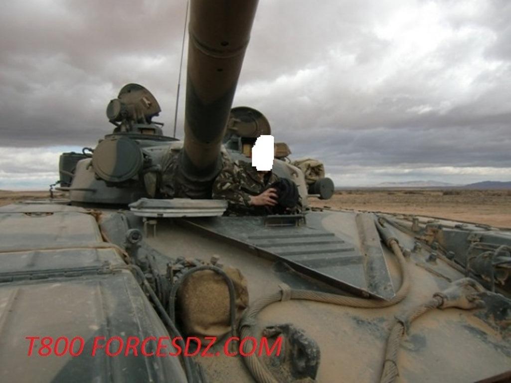 صور دبابات قتال رئيسية الجزائرية T-72M/M1/B/BK/AG/S ] Main Battle Tank Algerian ]   269097xd32336b4