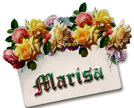 Nombres con M - Página 4 2697153Marisa