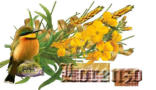 Nombres con L - Página 3 2698794Lorenzo