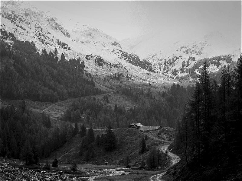 Les alpes  autrichiennes - Page 2 270001309368P1000183neigemuritzenA1200nbt