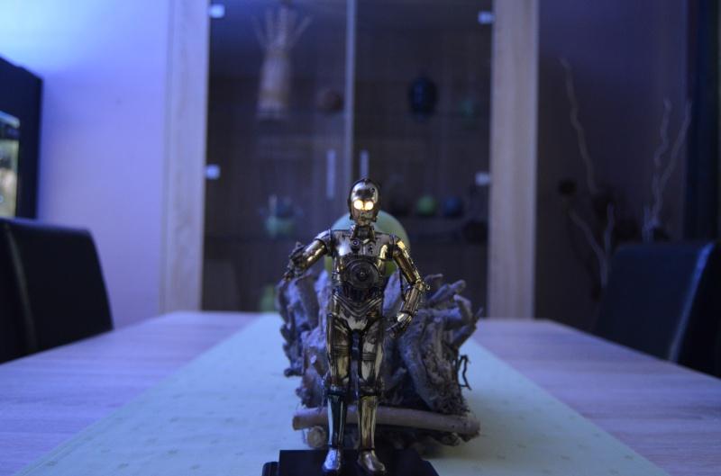 C-3PO de Bandai  271933DSC0002