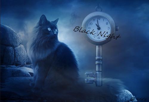 Noir'y LDD ♫♪ 273628NoiryLDD4