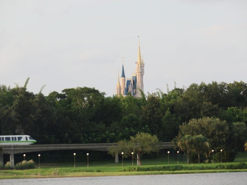 Walt Disney World + Universal Studios + Sea World + Busch Gardens Summer 2014 - Page 6 274423IMG1254