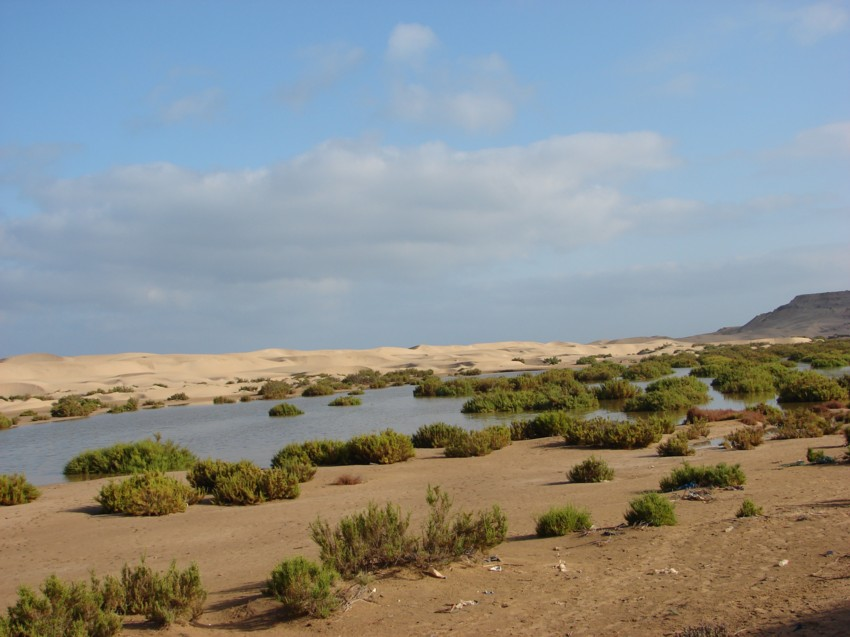 Le Grand Sud du Maroc - II 280743001