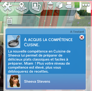 [Clos] Les défis Sims - Niveau 0 - Page 2 286157Level1
