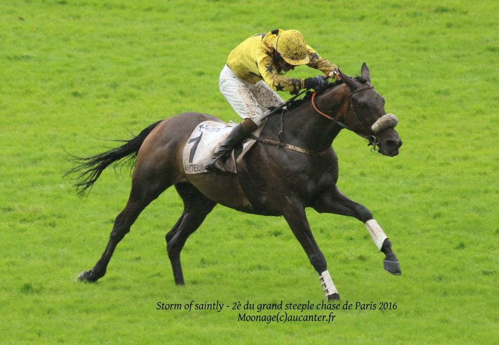 Photos Auteuil 22-05-2016 2899195J6A2903