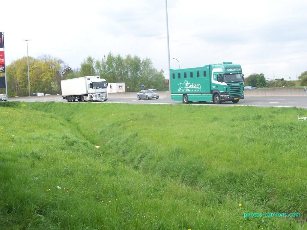 Transports de chevaux 290034photoscamions30Avril201245