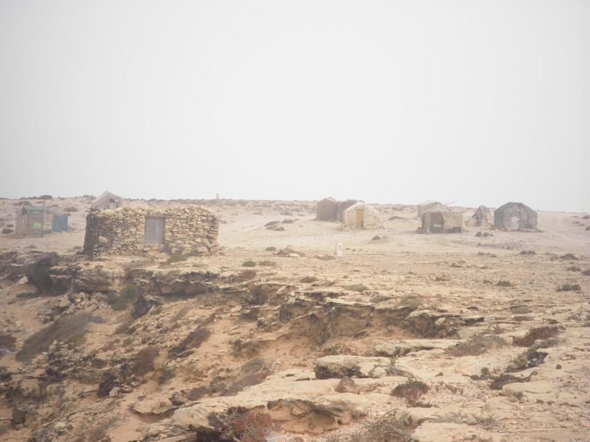 retour Maroc octobre 2013 - Page 2 290527116