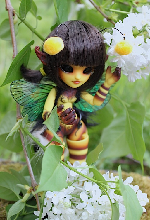 Nouvelle tenue pour ma petite Frost (Butterfly) p7 - Page 3 292132Bee6