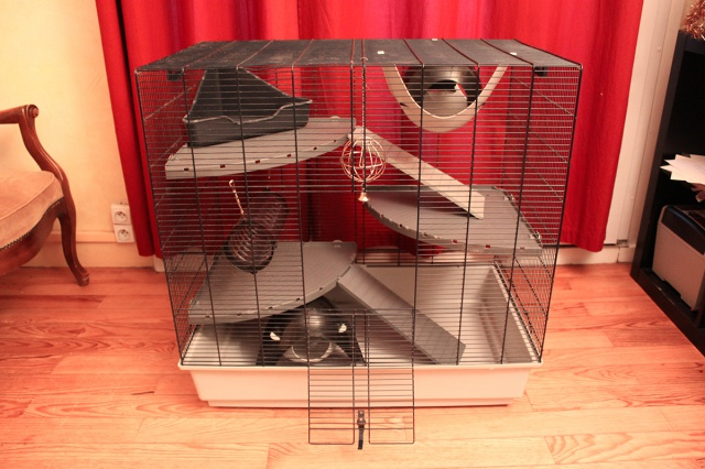 Vends cage Freddy Max 2 + cage Ruffy 2 293378grandecageavecaccessoirs