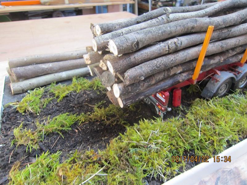 Le bois et le transport 293925IMG4484Copier