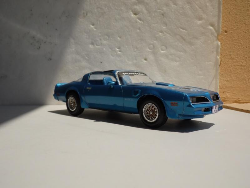 Pontiac Trans-am '78 -1000 jours- 294232SAM7150