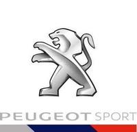 Première course et premier podium pour le Team Peugeot Hansen ! 295299peugeotsport