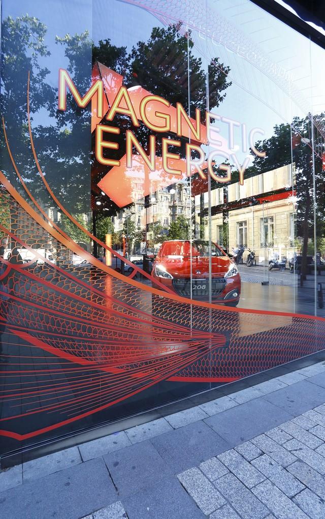 Un Dragon S'installe Au Peugeot Avenue Paris ! 298959SBY8076