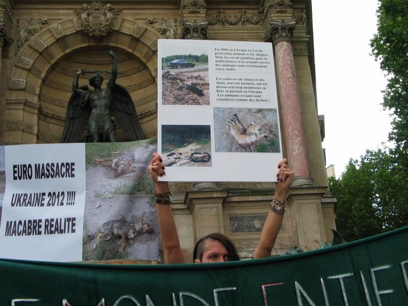 11 - Manifestation contre le massacre des animaux en Ukraine - 9 juin 2012 302006IMG9194