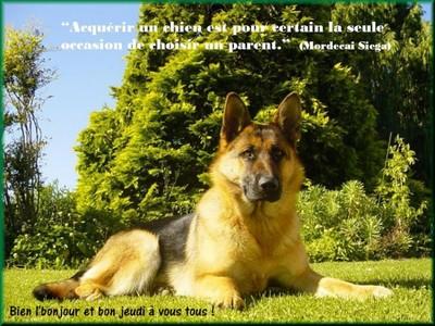 Bonjour bonsoir,...blabla Aout 2013 - Page 9 306167je170110