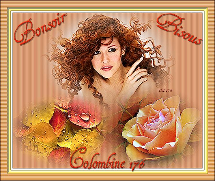 BON SAMEDI SOIR 08/11 307030FRoseFeuillesBonsoir