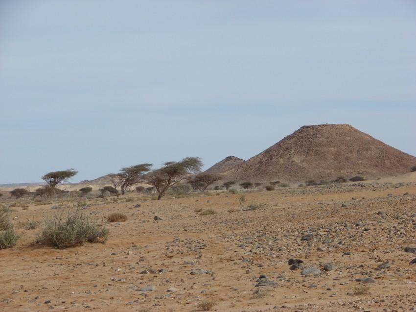 Le Grand Sud du Maroc - II 311556052