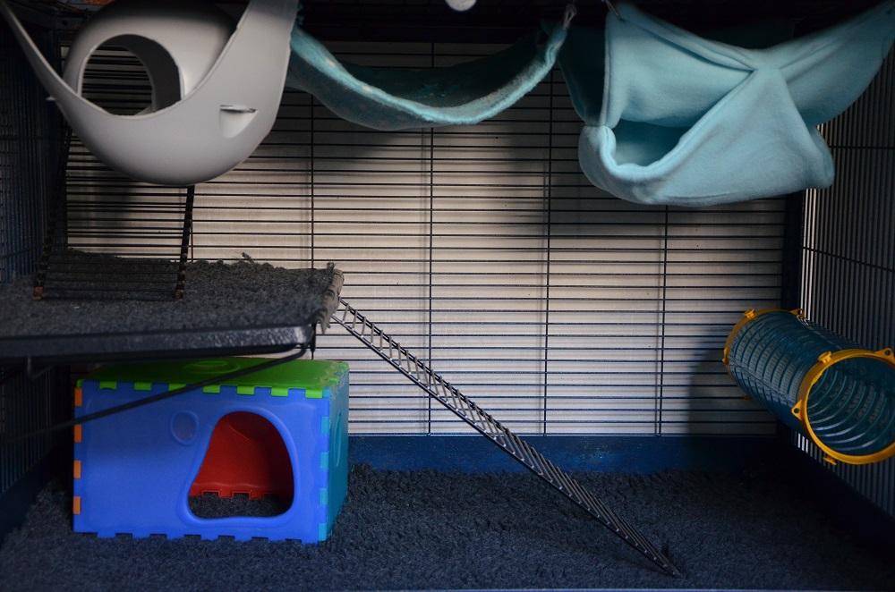 Photos de vos cages - Page 3 314438Royalsuite351