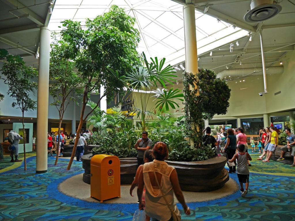Une lune de miel à Orlando, septembre/octobre 2015 [WDW - Universal Resort - Seaworld Resort] - Page 6 320748P1030256