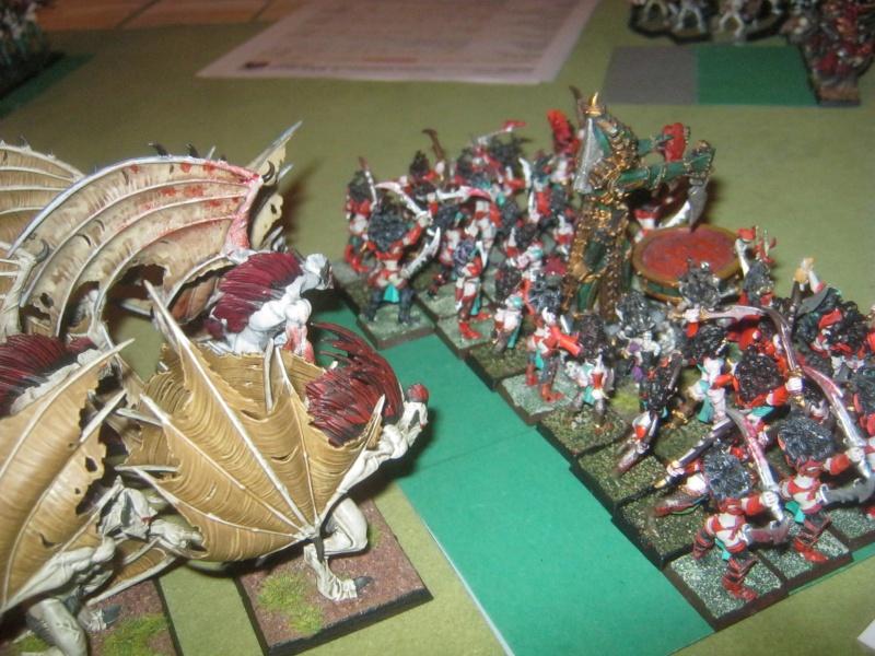 Méga bataille en 3 parties, pour une mini campagne 320959IMG1571