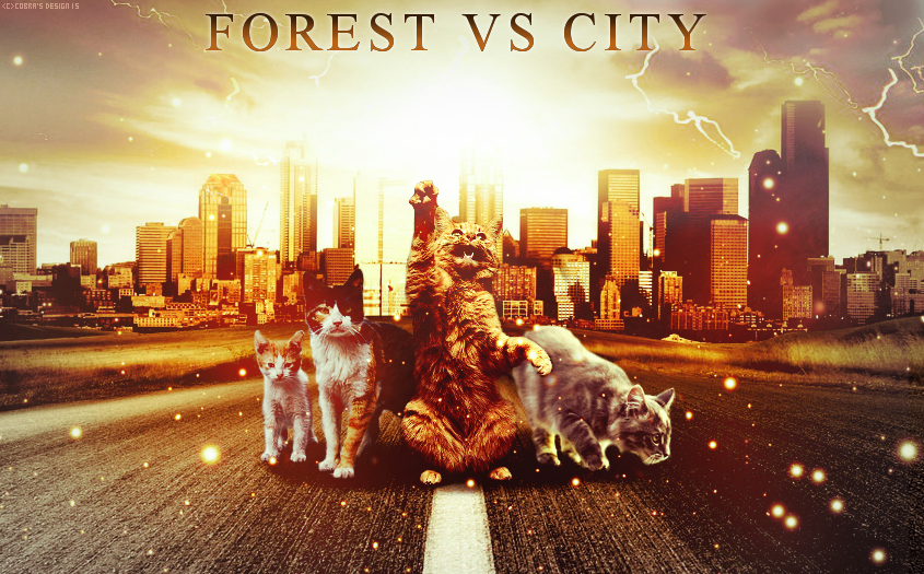 Forest VS City