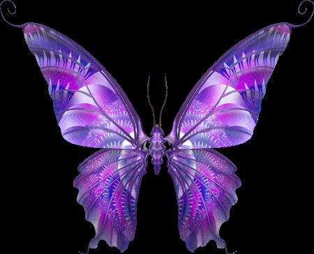 Tubes Papillon 326356Melgibson4535