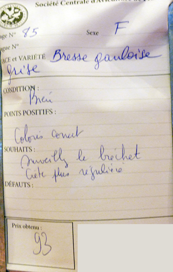 2014 - salon de l'Aviculture de Paris du 22/02/2014 au 02/03/214 - Page 3 328140P1130278