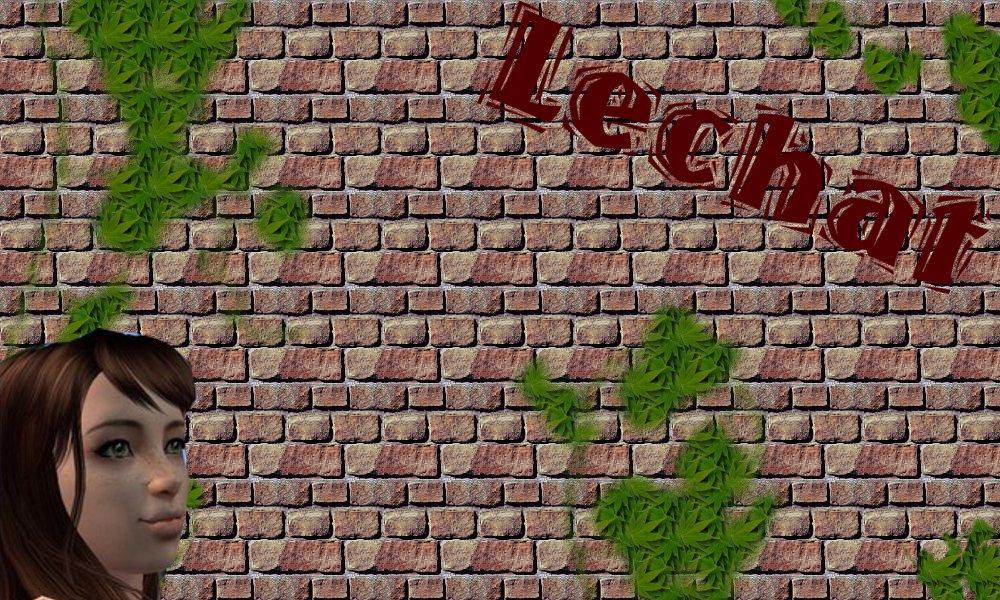 La Galerie de Lusa 328187AvatarLechat