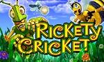 reckety-cricket