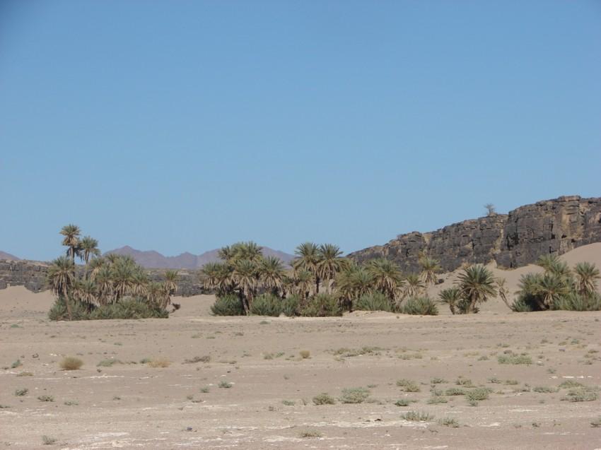 Le Grand Sud du Maroc - II 331407120
