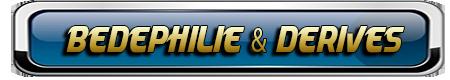 COLLECTIONNEURS DE LA MAYENNE, DE FRANCE ET D'AILLEURS 331691BEDEPHILIEETDERIVES