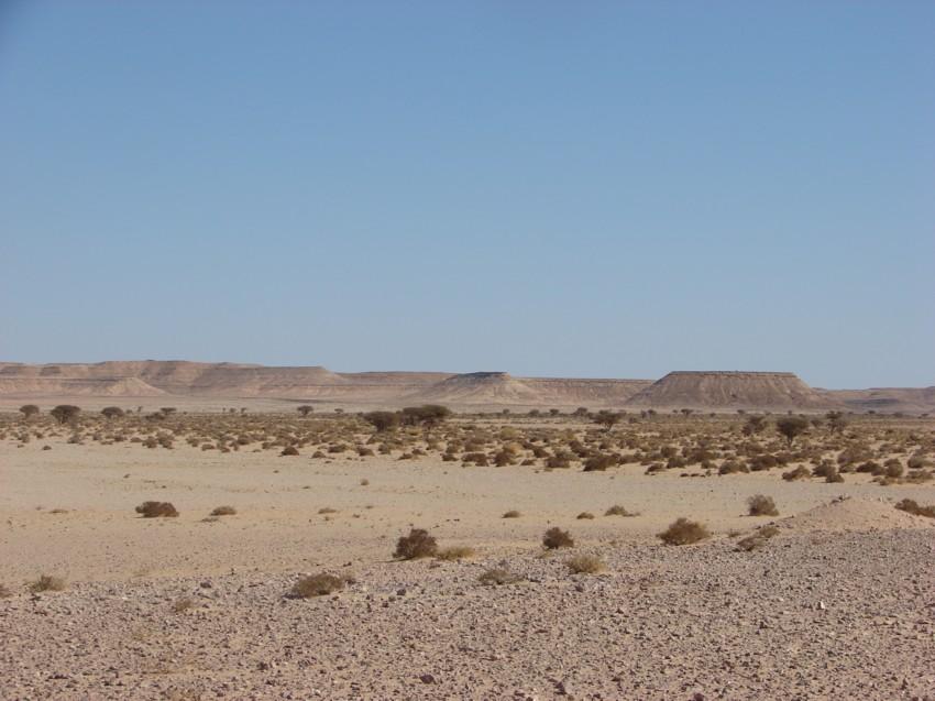 Le Grand Sud du Maroc - II 332041099