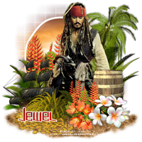 Aperçu des tutos de l'admin Jewel 332211tuto1077blackpearl