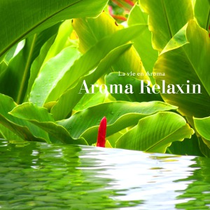 Compilations incluant des chansons de Libera 333470AromaRelaxin300