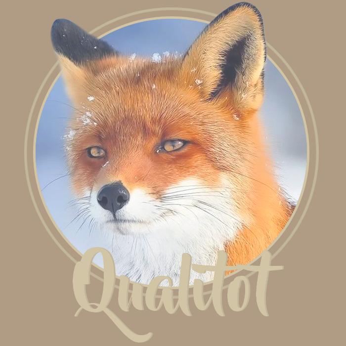 Qualitot