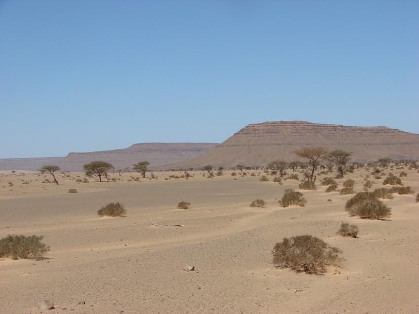 Le Grand Sud du Maroc - II 338124093